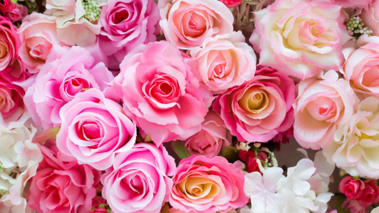 5f622cdce607 Μαθετε τουΣ συμβολισμουΣ των λουλουδιων πριν τα χαρισετε Επιμ.  Αργυρώ  Μποζώνη