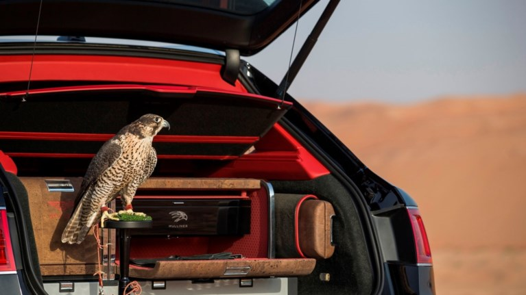 bentaya-falconry-entaksei-stin-bentley-exoun-pleon-ksefugei-entelws