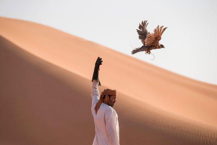 Με τόσο αναβαθμισμένο τρόπο μετακίνησης το γεράκι είναι άτοιμο για δυναμικές πτήσεις