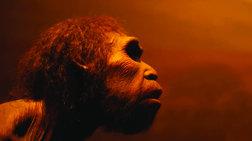Νέα έρευνα: Ο πρώτος Άνθρωπος ίσως να εμφανίσθηκε στην Ελλάδα