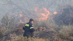 Αλεξανδρούπολη: Εψηνε παϊδάκια αλλά... έβαλε φωτιά στο δάσος