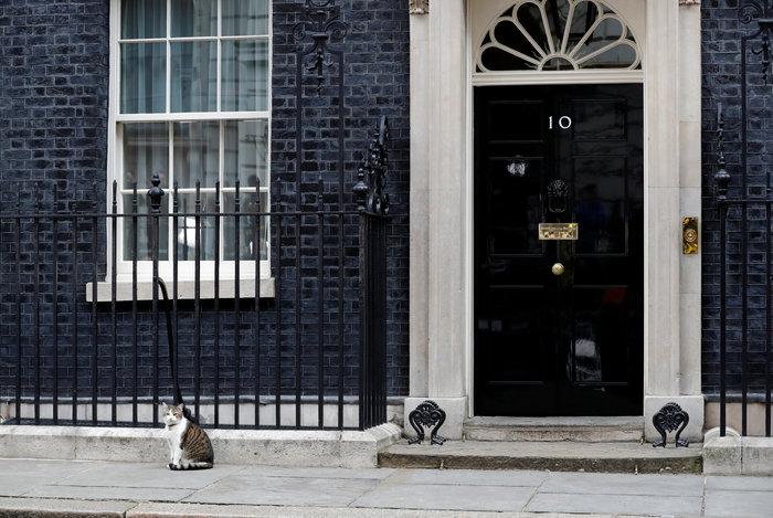 Ποια Μέι; Ο γάτος Λάρι... αυτοδύναμος στην Ντάουνινγκ Στριτ - εικόνα 2