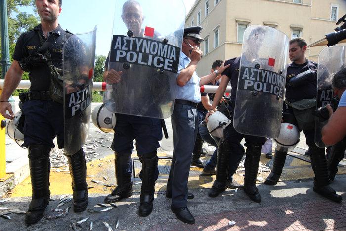 Διαδηλωτές του ΠΑΜΕ πέταξαν σαρδέλες στο προαύλιο της Βουλής (φωτό) - εικόνα 5