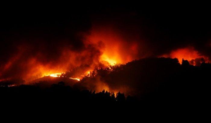 Πύρινη κόλαση στην Πορτογαλία: Φωτιά σε δάσος με 57 νεκρούς (ΦΩΤΟ&ΒΙΝΤΕΟ) - εικόνα 4