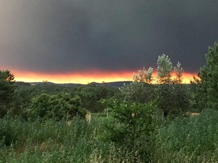 Πύρινη κόλαση στην Πορτογαλία: Φωτιά σε δάσος με 57 νεκρούς (ΦΩΤΟ&ΒΙΝΤΕΟ) - εικόνα 6