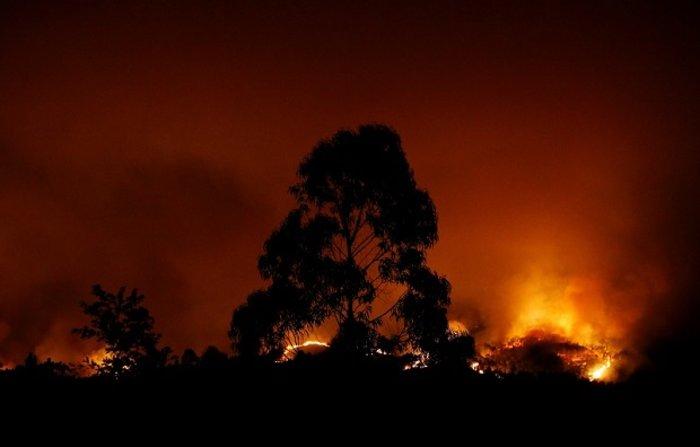 Πύρινη κόλαση στην Πορτογαλία: Φωτιά σε δάσος με 57 νεκρούς (ΦΩΤΟ&ΒΙΝΤΕΟ)