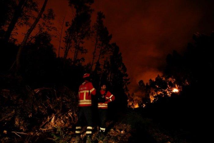 Πύρινη κόλαση στην Πορτογαλία: Φωτιά σε δάσος με 57 νεκρούς (ΦΩΤΟ&ΒΙΝΤΕΟ) - εικόνα 3