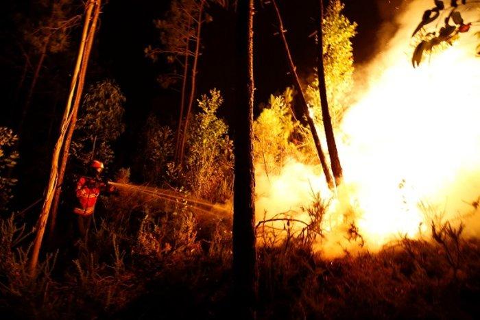 Πύρινη κόλαση στην Πορτογαλία: Φωτιά σε δάσος με 57 νεκρούς (ΦΩΤΟ&ΒΙΝΤΕΟ) - εικόνα 5