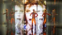 Εδωσαν το όνομα του David Bowie σε εξαφανισμένο είδος σφήκας