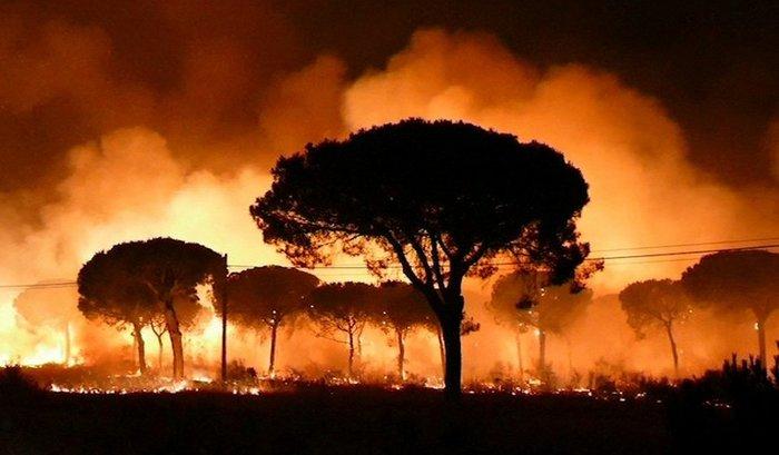 Κόλαση φωτιάς στη Ν. Ισπανία - Εγκλωβισμένοι 50.000 άνθρωποι