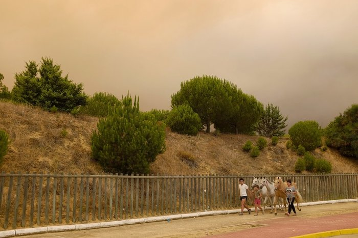 Κόλαση φωτιάς στη Ν. Ισπανία - Εγκλωβισμένοι 50.000 άνθρωποι - εικόνα 9