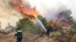Σε εξέλιξη πυρκαγιά σε αγροτοδασική έκταση στην Κερατέα Αττικής