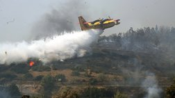 Εκτακτο: Μεγάλη πυρκαγιά μαίνεται στον Ωρωπό, κοντά σε σπίτια
