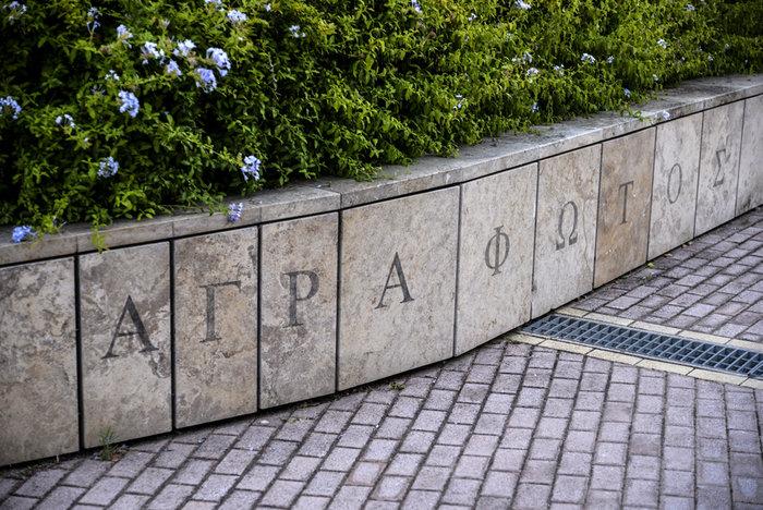 Ο κήπος βλέπει: 26 καλλιτέχνες εκθέτουν στον Κήπο του Μεγάρου - εικόνα 3