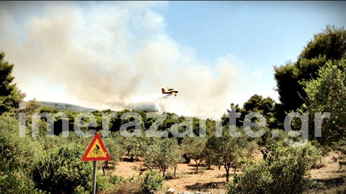 Νέα φωτιά στη Ζάκυνθο στις Βολίμες κοντά στο «Ναυάγιο»