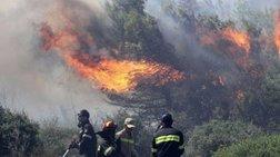 Διαστάσεις έχει πάρει η φωτιά στις Σπέτσες, διάσπαρτες εστίες