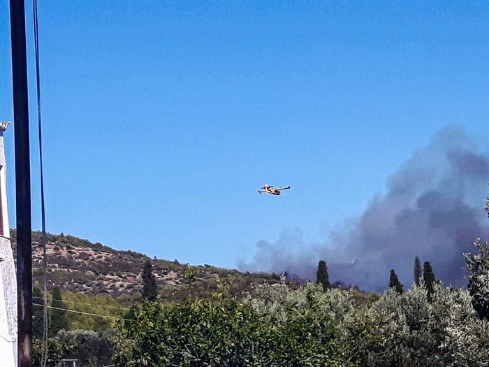 Υπό έλεγχο η μεγάλη πυρκαγιά στις Σπέτσες [ΕΙΚΟΝΕΣ] - εικόνα 3