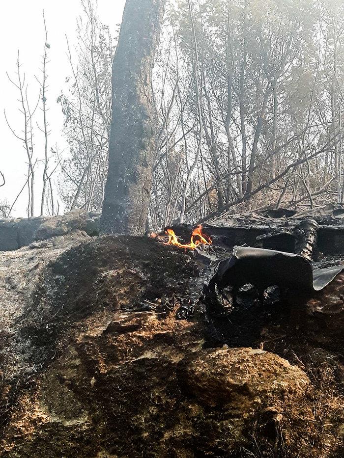 Υπό έλεγχο η μεγάλη πυρκαγιά στις Σπέτσες [ΕΙΚΟΝΕΣ] - εικόνα 2
