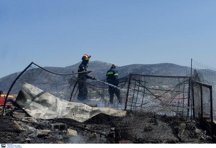 Υπό έλεγχο η φωτιά στη Λέσβο - Κάηκαν σπίτια στο Λαγονήσι - εικόνα 12