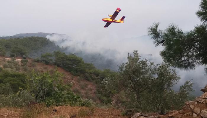 Υπό έλεγχο η φωτιά στη Λέσβο - Κάηκαν σπίτια στο Λαγονήσι