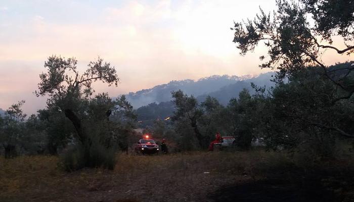 Υπό έλεγχο η φωτιά στη Λέσβο - Κάηκαν σπίτια στο Λαγονήσι - εικόνα 3