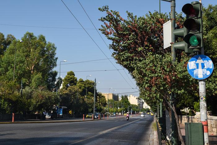 «Βόλτα» στην άδεια Αθήνα του Αυγούστου  [ΕΙΚΟΝΕΣ]