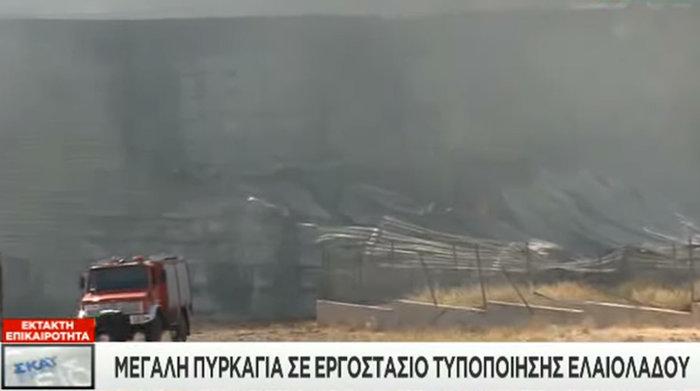 Πυρκαγιά σε εξέλιξη σε εργοστάσιο τυποποίησης ελαιολάδου στα Μέγαρα