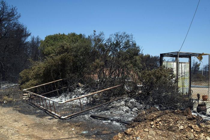 Εικόνες βιβλικής καταστροφής στα Κύθηρα από τον πύρινο εφιάλτη - εικόνα 5