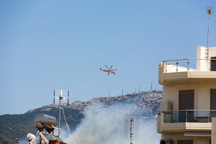 Υπό έλεγχο η φωτιά στην Καισαριάνη κοντά στο Σκοπευτήριο - εικόνα 3