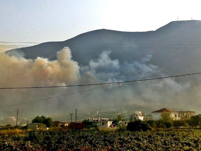 Εξακολουθεί να μαίνεται η μεγάλη φωτιά στη Ζάκυνθο - εικόνα 2