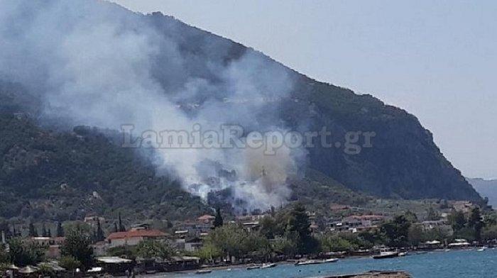 Υπό έλεγχο τέθηκε η φωτιά στα Καμένα Βούρλα πάνω από την Εθνική (ΦΩΤΟ) - εικόνα 2