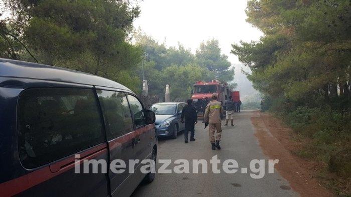 Ζάκυνθος: Σε πύρινο κλοιό-Τρίτη ημέρα μάχης με τις φλόγες - εικόνα 3