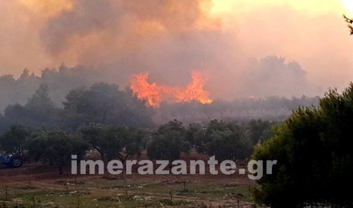Ζάκυνθος: Σε πύρινο κλοιό-Τρίτη ημέρα μάχης με τις φλόγες - εικόνα 5