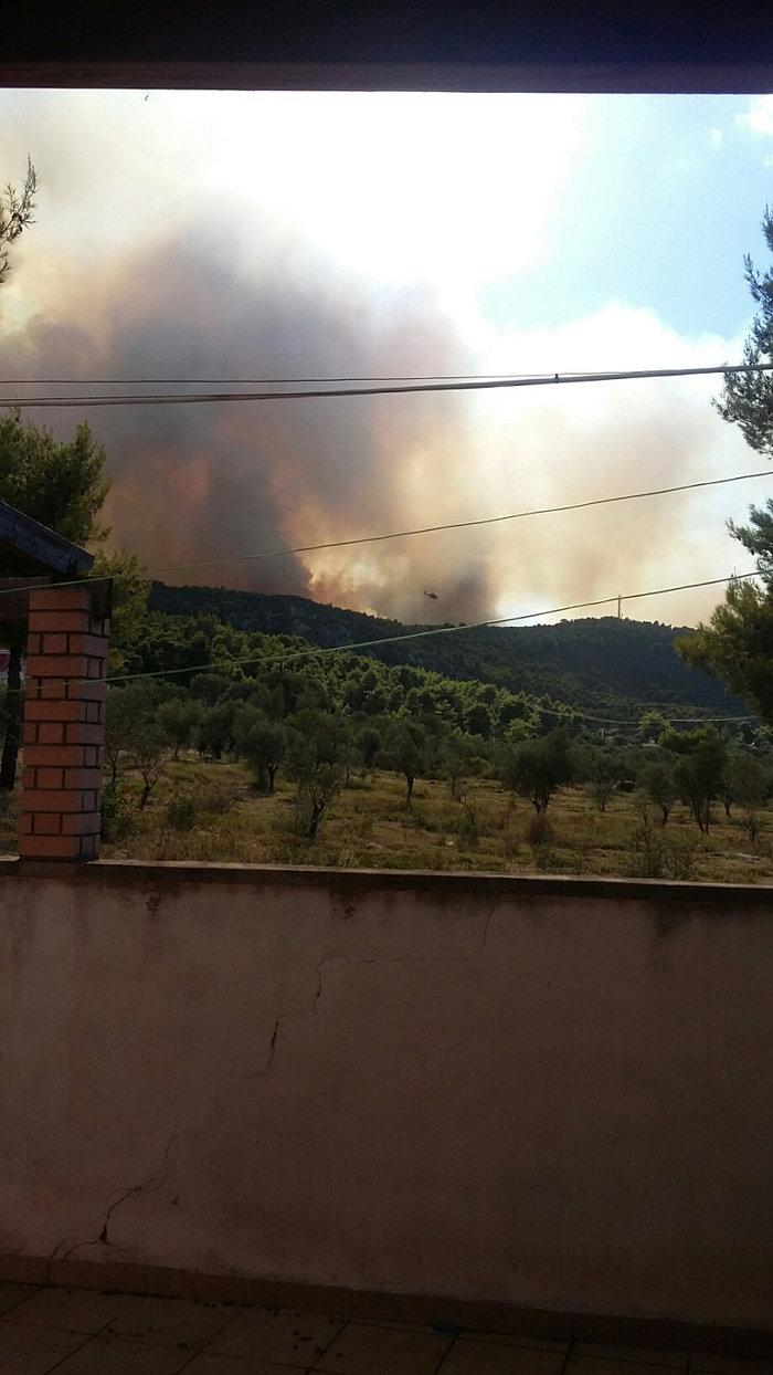 Εκτός ελέγχου η φωτιά σε Κάλαμο - Βαρνάβα: Απειλούνται σπίτια - εικόνα 16