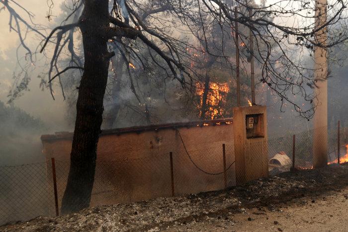 Εκτός ελέγχου η φωτιά σε Κάλαμο - Βαρνάβα: Απειλούνται σπίτια - εικόνα 9