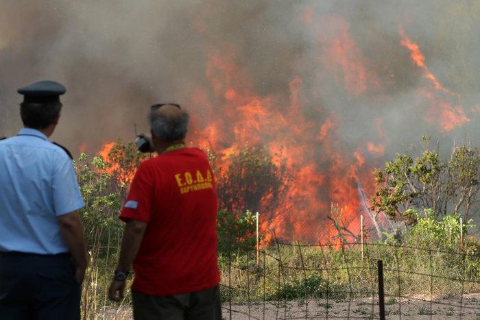 Εκτός ελέγχου η φωτιά σε Κάλαμο - Βαρνάβα: Απειλούνται σπίτια - εικόνα 11
