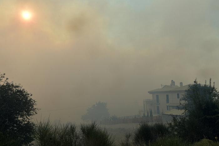 Μάχη με φλόγες και αναζωπυρώσεις από Βαρνάβα μέχρι Καπανδρίτι - εικόνα 3
