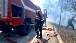 Σε ένα 24ωρο εκδηλώθηκαν 91 πυρκαγιές σε όλη την Ελλάδα
