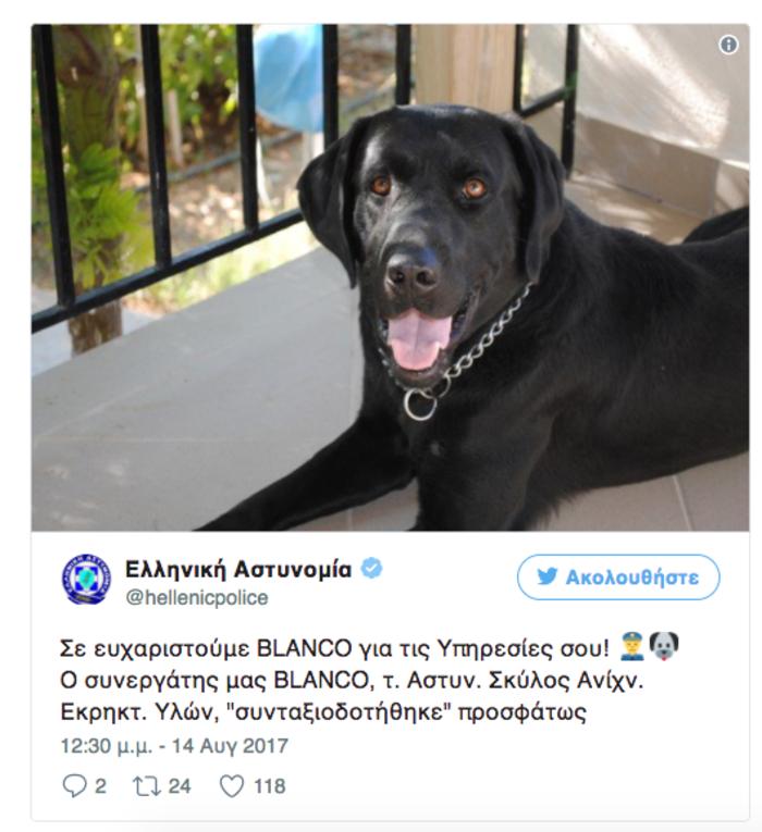 Στη σύνταξη βγαίνει ο αστυνομικός σκύλος, το λαμπραντόρ Blanco