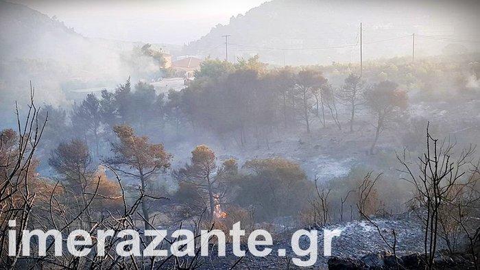 Συνεχείς οι αναζωπυρώσεις στα μέτωπα της φωτιάς στην Ζάκυνθο - εικόνα 2