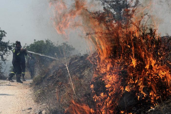 Έντονη ανησυχία από τις συνεχείς αναζωπυρώσεις στο Καπανδρίτι - εικόνα 2