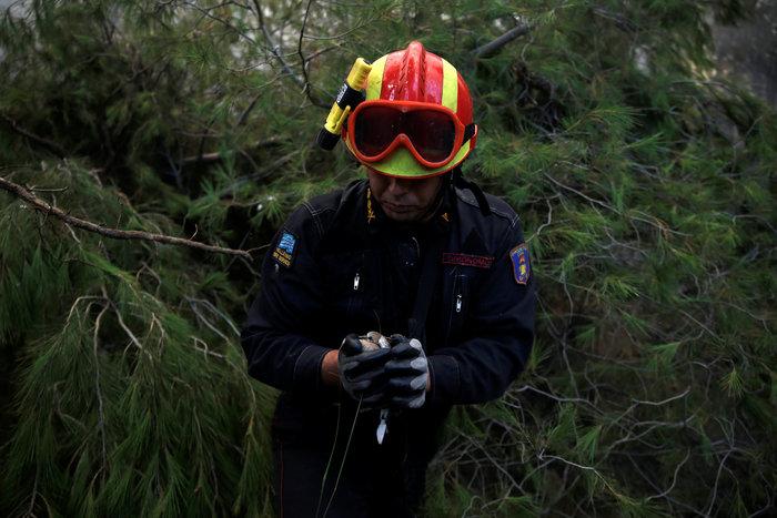Η ανθρωπιά ενός πυροσβέστη σε μια συγκλονιστική φωτογραφία - εικόνα 2