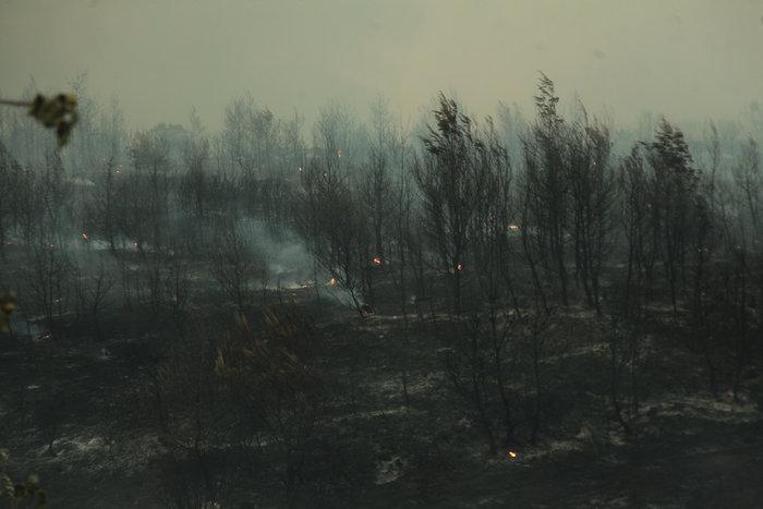 Χωρίς ενεργό μέτωπο πυρκαγιάς στην ανατολική Αττική - εικόνα 2