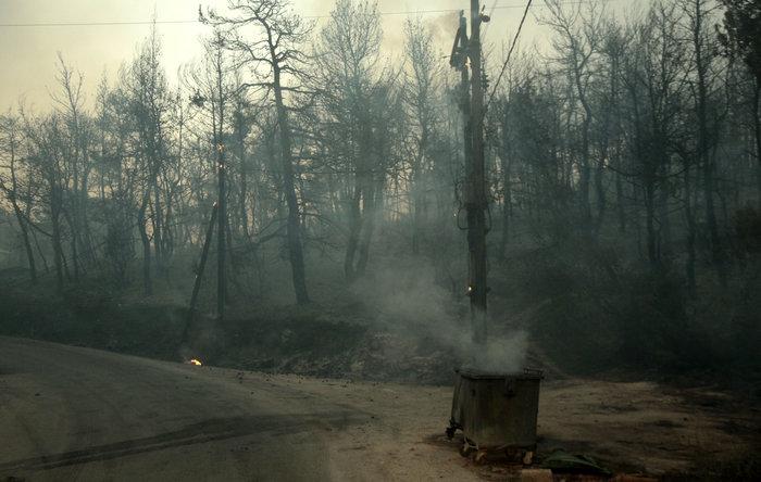 Χωρίς ενεργό μέτωπο πυρκαγιάς στην ανατολική Αττική - εικόνα 3