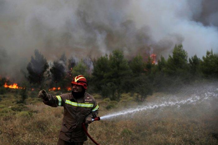 Φωτιές, η επόμενη μέρα: Οι ελλείψεις, οι πλημμέλειες και οι ευθύνες - εικόνα 6