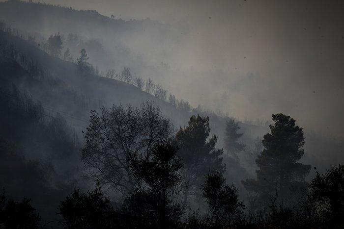 Mελέτες για αντιπλημμυρικά μετά τις φωτιές στην Ανατ. Αττική