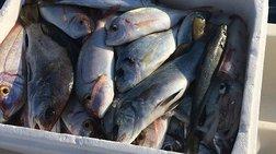 Ποιος «γαλάζιος» πρώην υπουργός πήγε για ψάρεμα