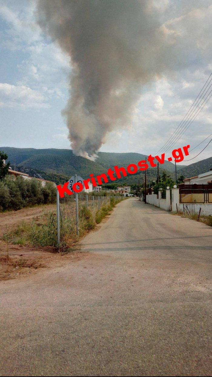 Περιορίστηκε η φωτιά σε δασική έκταση στο Ρυτό Κορινθίας (φωτό) - εικόνα 8
