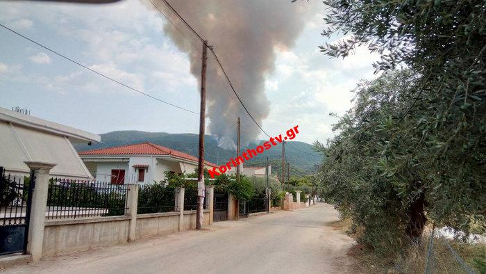 Περιορίστηκε η φωτιά σε δασική έκταση στο Ρυτό Κορινθίας (φωτό) - εικόνα 9
