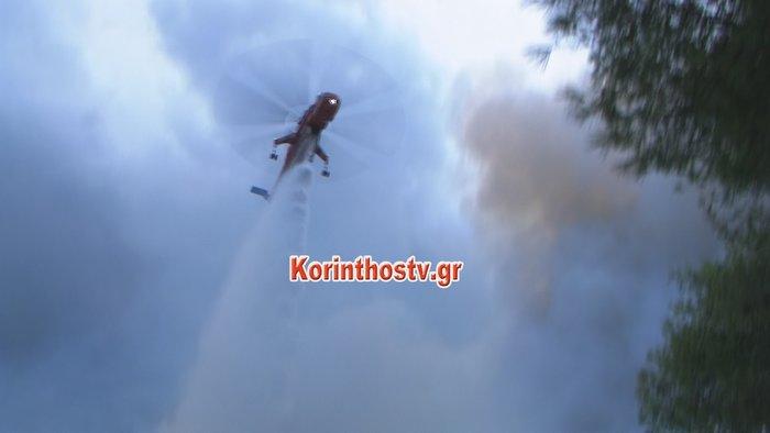 Περιορίστηκε η φωτιά σε δασική έκταση στο Ρυτό Κορινθίας (φωτό) - εικόνα 2